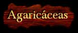 Agaricáceas